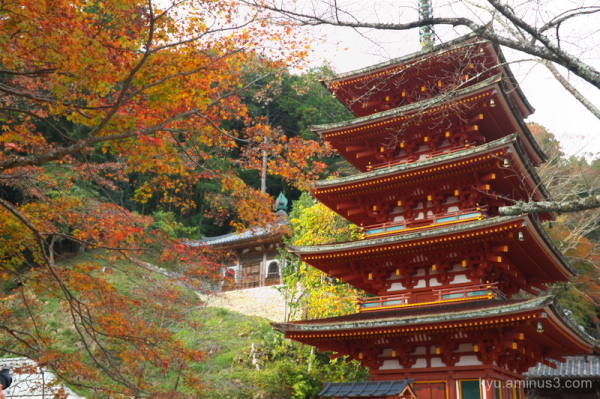 Pagoda in autumn colors