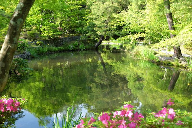 azalea garden Tojiin temple Kyoto