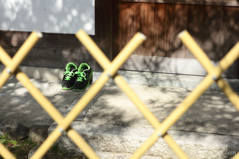 basking-in-the-sun shoes