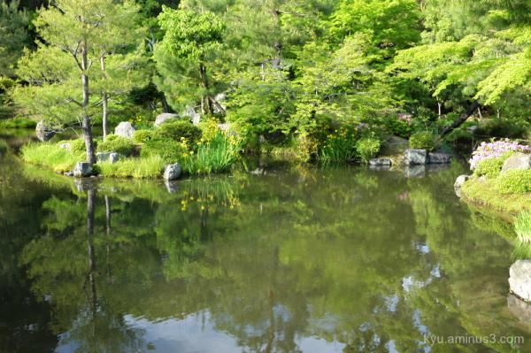 pond garden Toujiin temple Kyoto