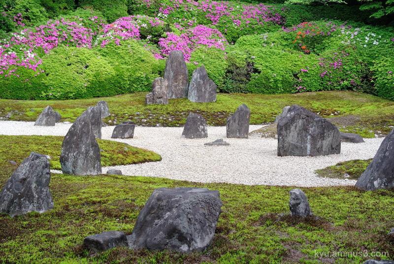 dry-landscape-garden azalea Komyoin temple
