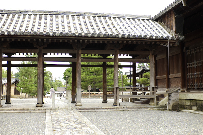 afternoon Myoshiji temple Kyoto