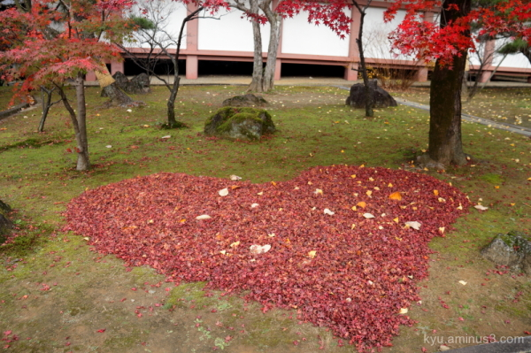 autumn red-maple leaves Chishakuin temple Kyoto