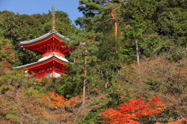 blue-sky pagoda Imakumanokannonji Temple Kyoto