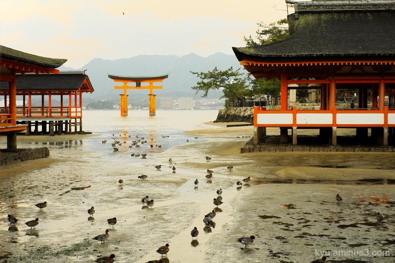ebb Itsukushima-shrine Miyajima Hiroshima