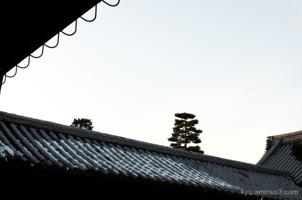 winter remaining-snow Myoshinji temple Kyoto