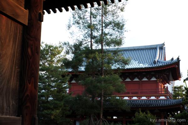 snow Myoshinji temple Kyoto