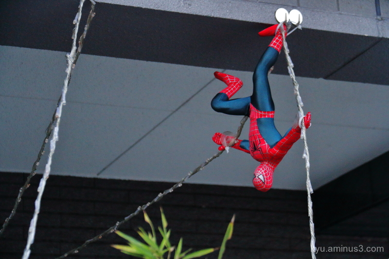 spiderman on-duty