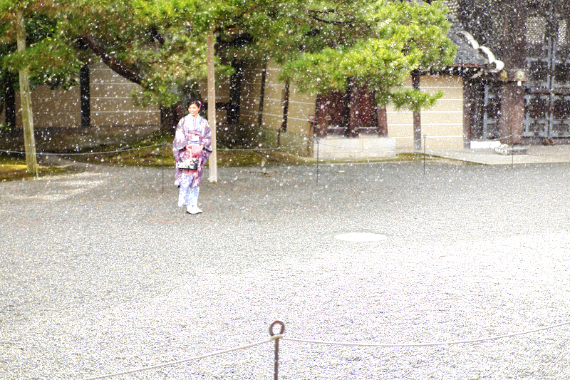 winter snowing Gosho Imperial-palace Kyoto