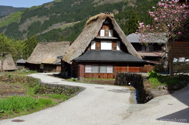 rural thatched-roof-house Gokayama Toyama