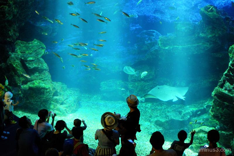 aquarium Kyoto