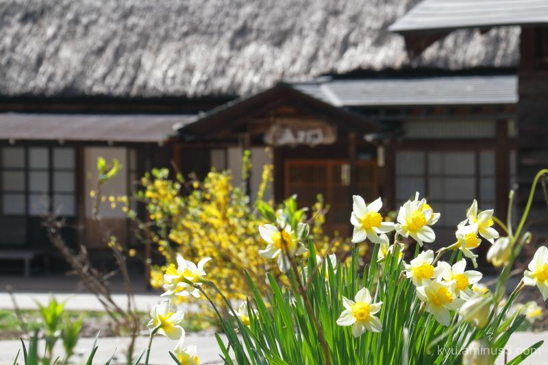 flowers thatched-roof houses Gokayama Toyama