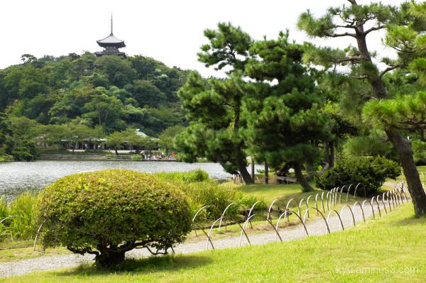 garden pagoda Sankeien Yokohama