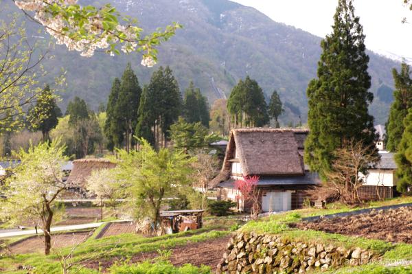 rural thatched-roof-houses Gokayama Toyama