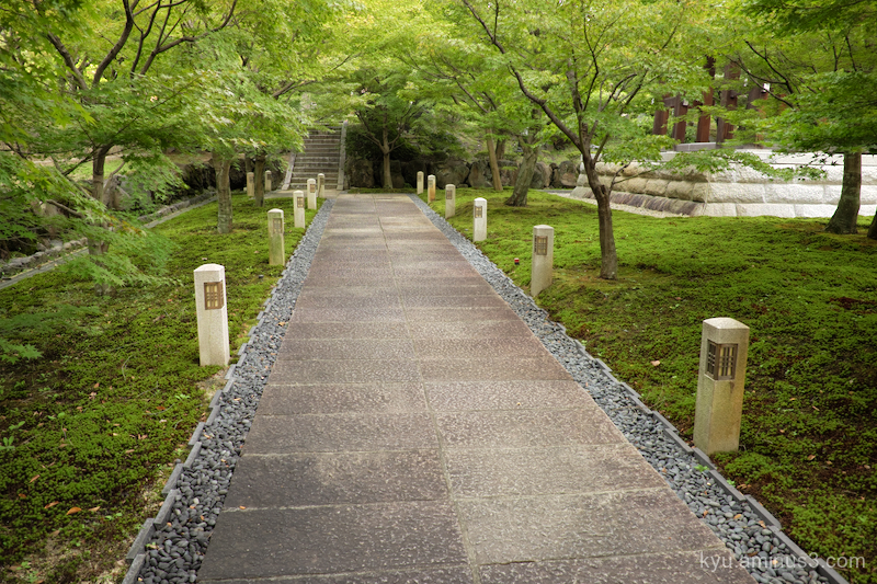 green-shade approach Chishakuin temple Kyoto