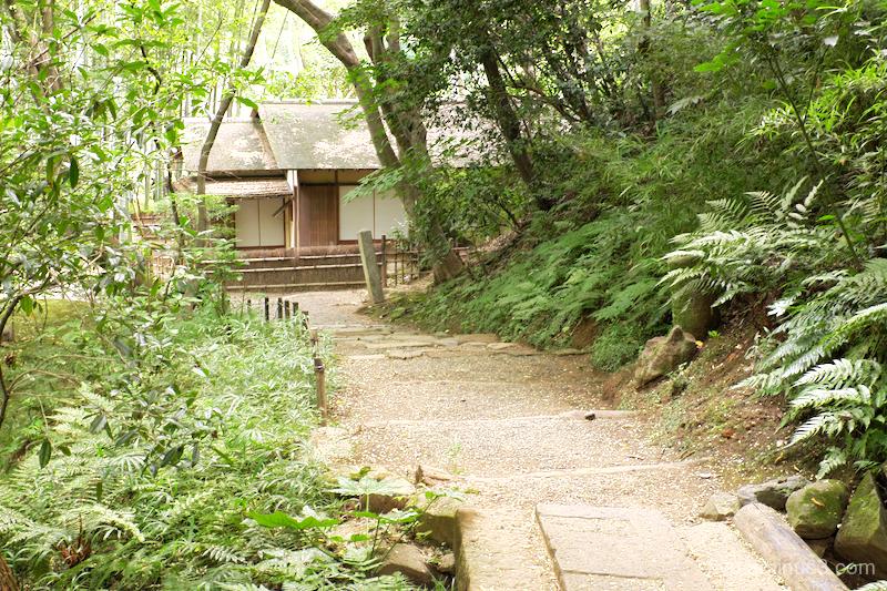 trail garden Sankeien Yokohama Kanagawa
