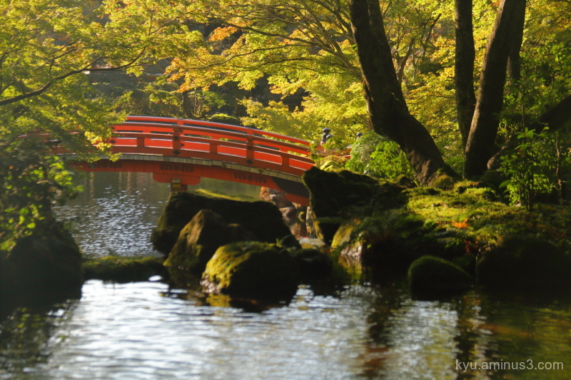 afternoon-light reflections Daigoji temple Kyoto
