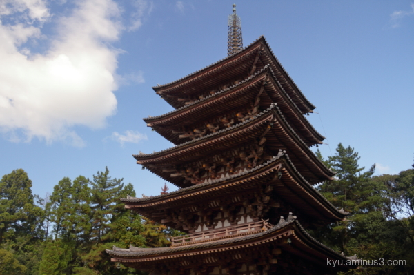 pagoda Daigoji temple Kyoto