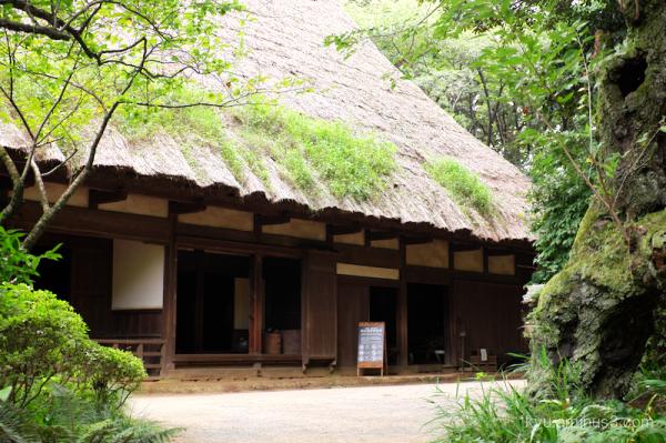 thatched-roof house garden Sankeien Yokohama