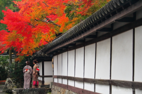 autumn red-maple Kimono tenjyuan Nanzenji temple