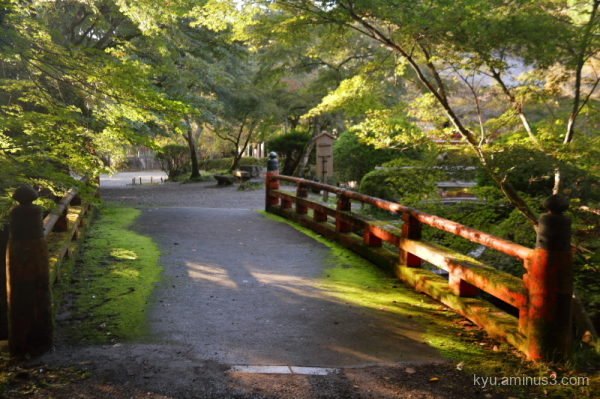 bridge garden Daigoji temple Kyoto
