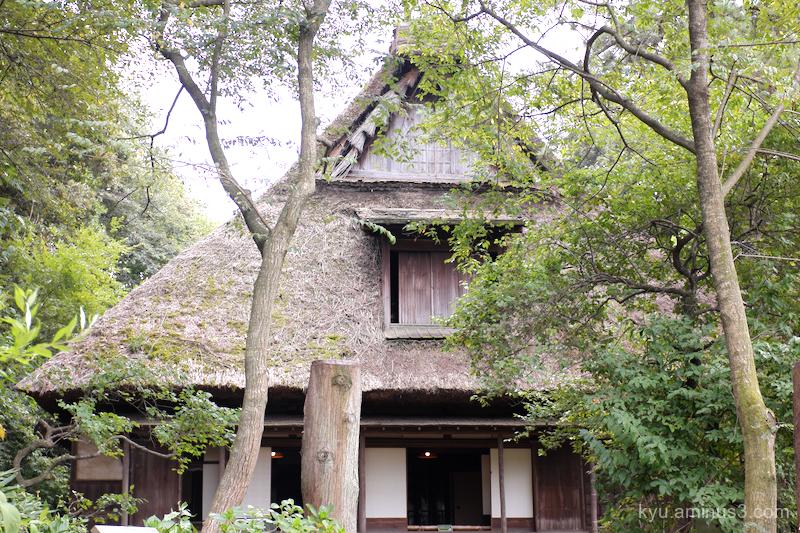 thatched-roof-house garden Sankeien Yokohama