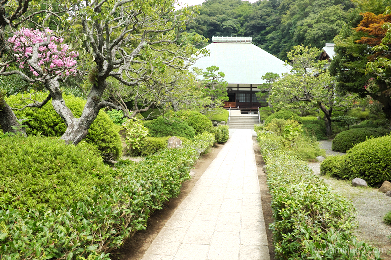 quietness Jyomyozenji temple Kamakura Kanagawa