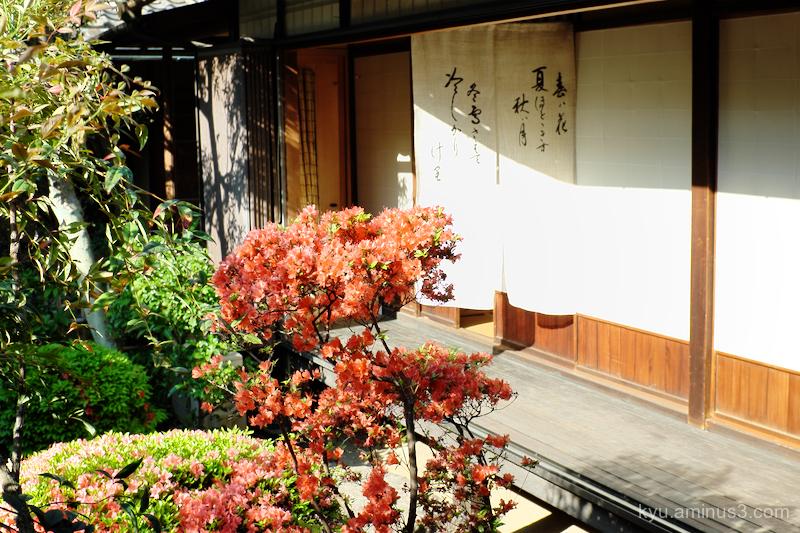 azalea Seideneigenin temple Kyoto