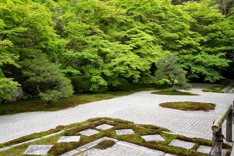 dry-landscape garden Tenjyuan temple Kyoto