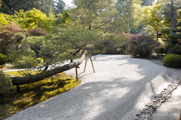 dry-landscape garden Manshuin temple Kyoto