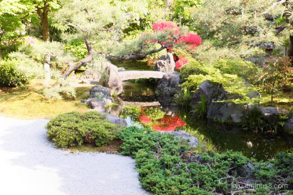 garden Azalea seideneigenin temple Kyoto