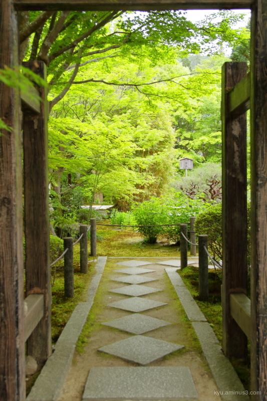 garden tenjuan temple Kyoto