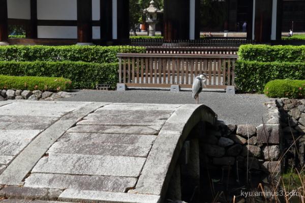 heron bridge pond Tofukuji temple Kyoto