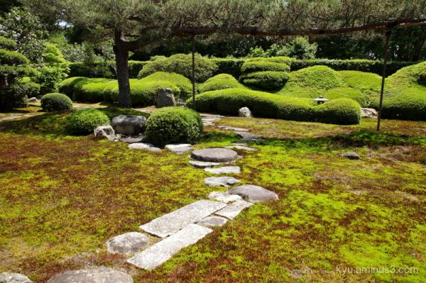 dry-garden Ikkain temple Kyoto