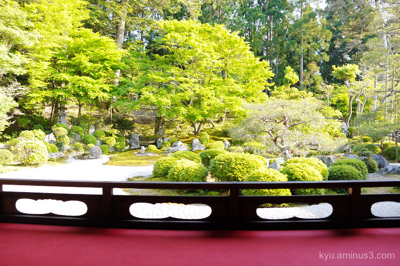 dry-garden Manshuin temple Kyoto