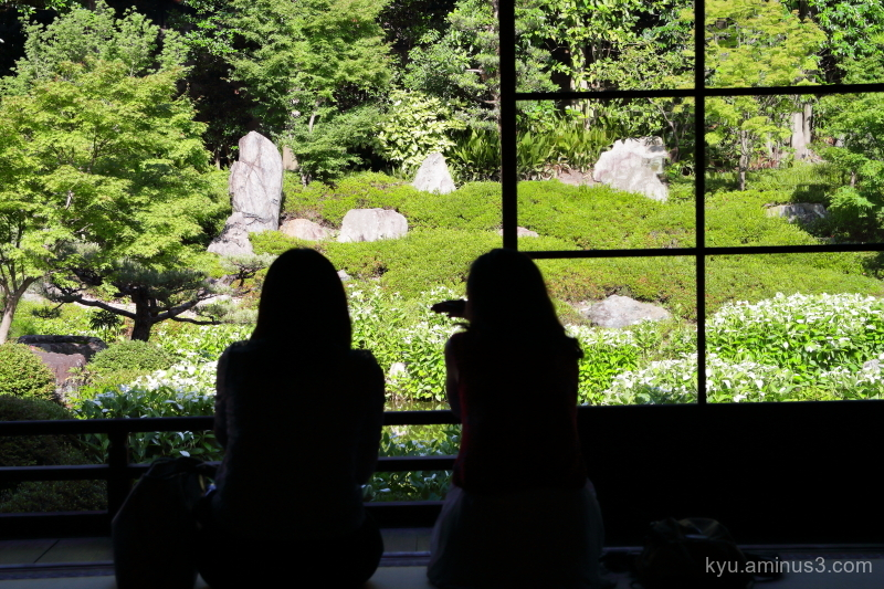 garden Hangesho Ryosokuin temple Kyoto