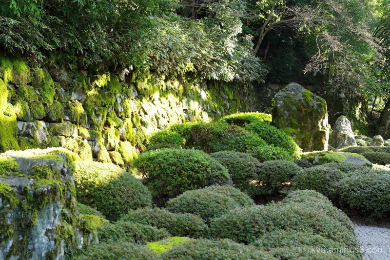 garden Chioin temple Kyoto