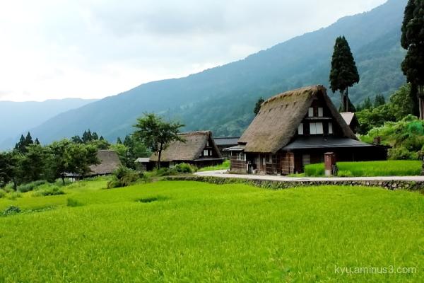 thatched-roof houses Gokayama Toyama