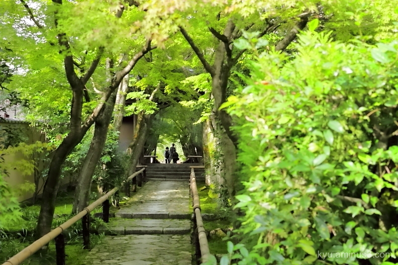 walk green Koetsuji temple Kyoto