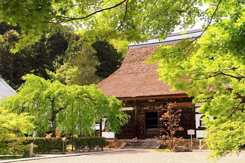 sunny-day Ankokuji temple Kyoto