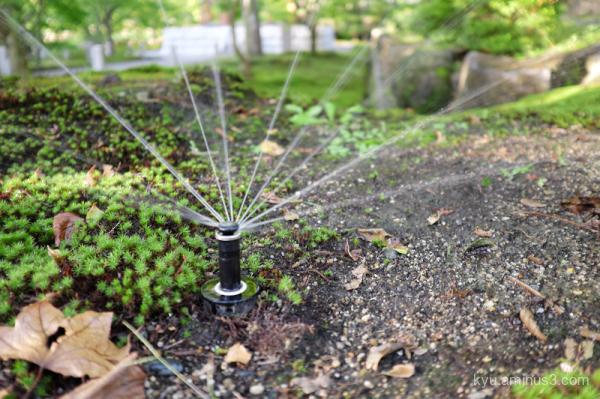 sprinkler Chishakuin temple Kyoto