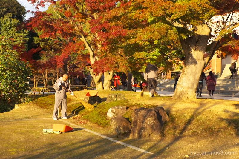 autumn Chishakuin temple Kyoto