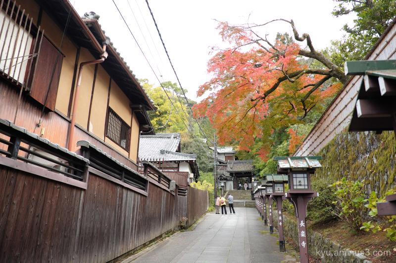 autumn red-maple Chorakuji temple Kyoto