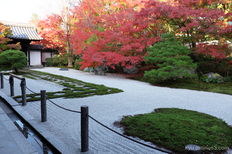 dry-garden red-maple Tenjuan temple Kyoto