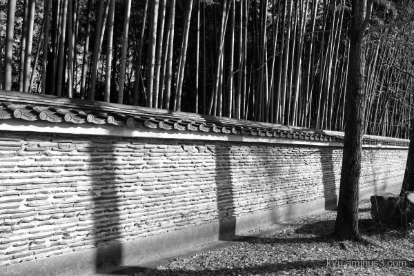 afternoon-light shadow temple mono Kyoto
