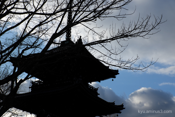 blue-sky pagoda shinnyodo temple