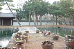 heron bridge pond Shookuji temple Kyoto