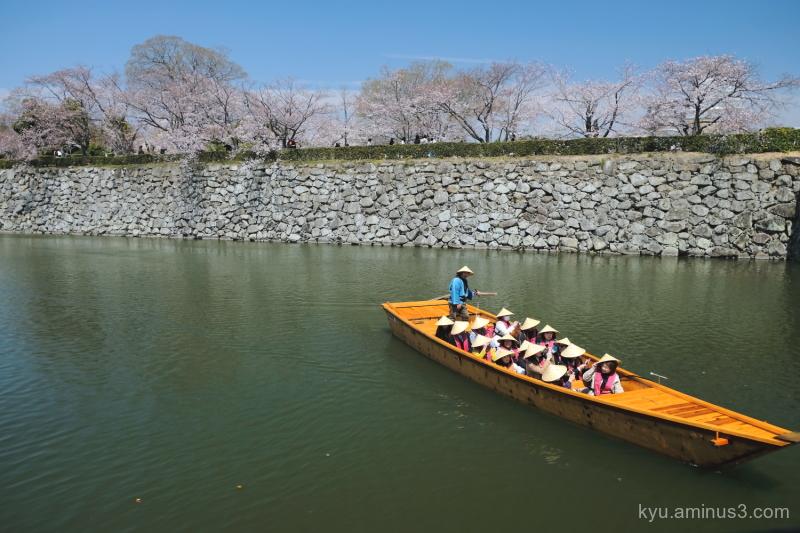 cherry-blossoms boat  Himeji-castle Himeji Hyogo