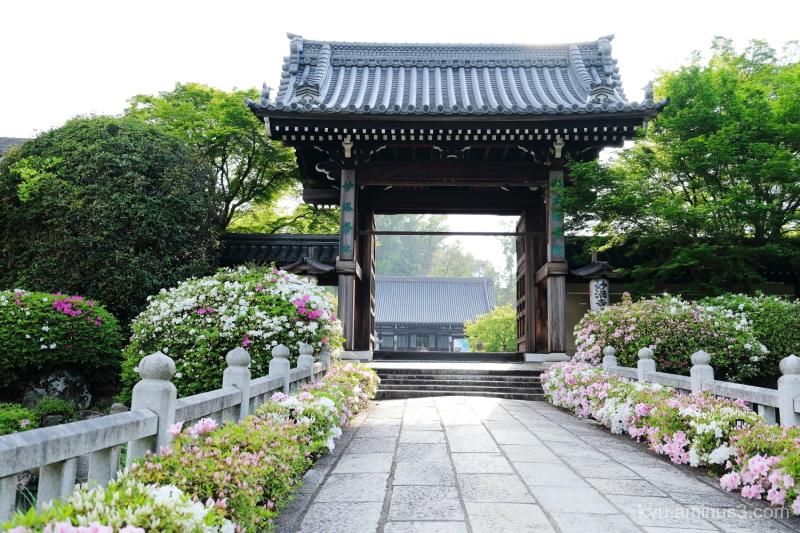 azalea gate Myomanji temple Kyoto