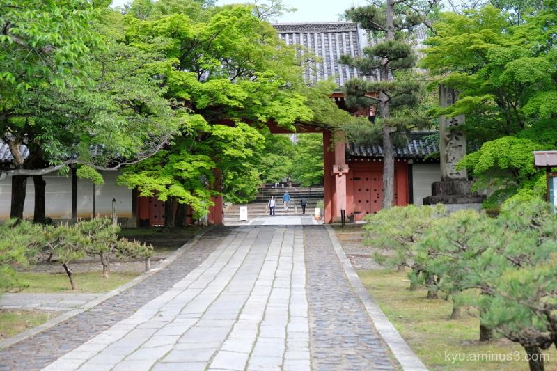 green-maple gate Shinyodo temple